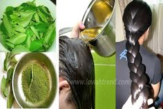 Homemade Magic Hair Growth Oil – Healthy, Thick And Long Hair