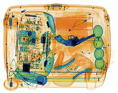 41 Best X Ray prints images in 2015 | Suitcases, Airport