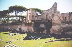 Forum Romanum, Rome | via It's Travel O'Clock
