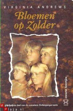 Google Afbeeldingen resultaat voor http://www.marktplaza.nl/images/1/34/Bloemen-op-zolder-7345934.jpg