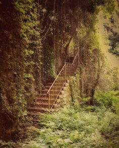 Stairway down to the water from the waterside cabin at Aurora Old Abandoned Buildings, Abandoned Mansions, Abandoned Places, Beautiful Buildings, Beautiful Landscapes, Beautiful Places, Places Around The World, Around The Worlds, Stairway To Heaven
