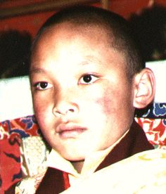 HH the Seventeenth Gyalwa Karmapa Urgyen Trinley Dorje, Part 1