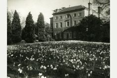 Braunstone Hall. http://www.leicestermercury.co.uk/spring-sees-park-8217-s-hall-getting-ready-to-bloom/story-30215397-detail/story.html