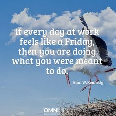 If every day at work feels like a friday, then you are doing what you were meant to do  #quoteoftheday #wisequote #success #motivation #focus #riseandgrind #shine #suceed #everyday #startup #lifestyle #entrepreneur #student #nootropics #supplements #omnimind