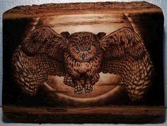 Owl Pyrography art - Artwork by Carlo Ferrario.