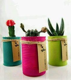 Cactus in a Can A great gift idea. These ones you can buy from The Neon Cactus. Poppytalk: 10 DIY Plant Ideas for Fall. Kaktus in plantenbak blik Neon Cactus, Cactus Flower, Flower Pots, Cactus Cactus, Diy Flower, Tin Can Crafts, Diy And Crafts, Fall Crafts, Creative Crafts
