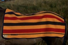 Witney Wool Race Horse Exercise Blankets