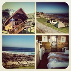Our Lodge 🎆The Tsitsikamma National Park is situated in the heart of the famous Garden Route in South Africa. The park offers some fine coastal scenery and sometimes the option of whale-watching. Tsitsikamma National Park, Famous Gardens, Whale Watching, All Pictures, South Africa, Cape, Coastal, Buildings, National Parks