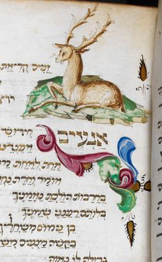 Stag--Festival prayer book, Italian rite Origin	Italy Date	3rd quarter of the…