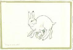 Mariana Magdaleno - Conejo de 7 patas, del Gabinete de Curiosidades, 2013