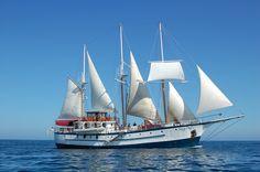 Island Windjammers Sagitta 2014  Windward Islands