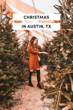 Visiting Austin Texas, Visit Austin, Austin Tx, Vacation Places, Places To Travel, Places To Go, Travel Destinations, Texas Hill Country, United States Travel