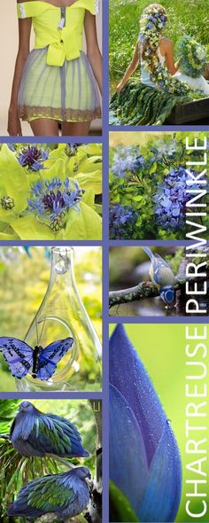 Chartreuse Green and Bleu Pervenche / Lu Inspiration # thuis . Color Trends, Color Combinations, Living Colors, Paint Color Schemes, Color Collage, Color Me Beautiful, Colour Board, Color Stories, Color Of Life