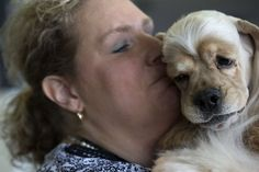 Stacy Domeier kisses her cocker spaniel Tucker before judging at the 139th Westminster Kennel Club's Dog Show in Manhattan, New York February 17, 2015. (Photo by Brendan McDermid/Reuters) | www.petnook.in #petnook