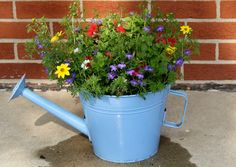 Watering Can used as a planter with colorful flowers! LOVE!