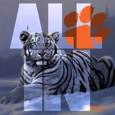 Clemson Football, Clemson Tigers, Fight Tiger, University Of South Carolina, Auburn University, Eagles, Beast, Lion Sculpture, Statue