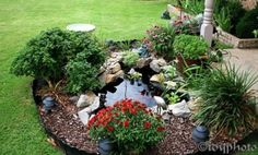 Small Yet Adorable Backyard Pond Ideas For Your Garden