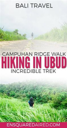Why The Beautiful Campuhan Ridge Walk in Ubud Bali Is Worth A Visit | If you are looking for Bali travel tips and beautiful places to visit, especially in Ubud, click to read more! This guide is something you should consider in your itinerary for Bali. #b