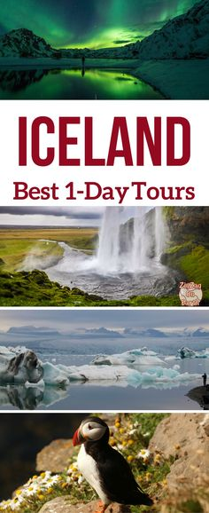 Iceland Travel Guide – Find out the best Iceland day tours out of Reykjavik – the most scenic itineraries, activities to see wildlife or the Northern lights and your options for Winter | Iceland Travel Tips | Iceland Trip | Iceland Things to do