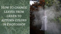How to Change Leaves from Green to Autumn Colors in Photoshop | Wild Empress Vanessa Skotnitsky