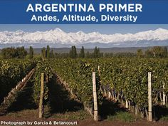 The Andes Mountains define Argentina's wine regions, making for diverse styles of Torrontes and Malbec. Learn the basics with Alberto Arizu in this video.