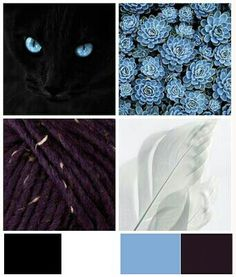 Color scheme Black and white with aubergine and blue