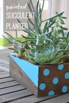 Painted Succulent Planter