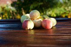Apples.  #nature #apples #food #crop #photoirinamaysova