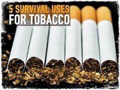Survival Uses Tobacco