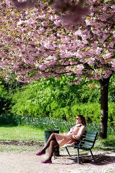 spring in Denmark