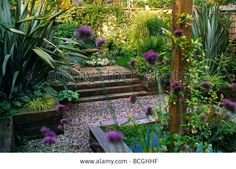 Patio Garden With Raised Bed Pool Gravel Paths Architectural Planting Stock Photo, Picture And Royalty Free Image. Pic. 24951291
