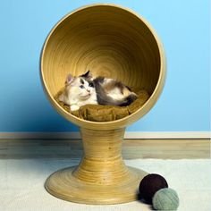 The Refined Feline Kitty Ball Bed, Bamboo - Might look cool with the pedestal painted an accent color?