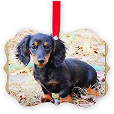 puppy love doxie dachshund christmas ornament decorative tree ornament