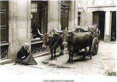 S d Compostela - Principios so século XX Foto do álbum Etnográfico Histórico Fotográfico.Fotografía de Galicia no Arxiu Mas