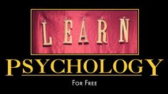 Psychology yale college course catalog