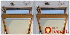 Dobrý deň, o tomto nápade som už raz písala, ale dávam to sem pre všetkých, ktorí sú z pavúkov v bytoch stále zúfalí. Mojej susede napríklad lezú do bytu z vtáčieho hniezda, ktoré si vtáčiky urobili na fasáde. Ak máte podobný problém a v lete stále otvorené okná, tento nápad sa mi osvedčil.
