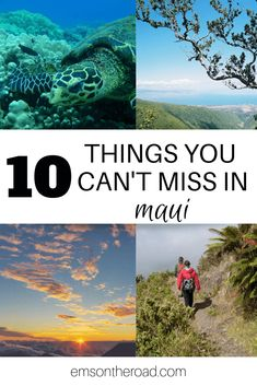 Discover the 10 things you absolutely can't miss when you're in Maui. These insider tips from an ex-resident will help you get off the beaten path and explore past the resorts and make the most of your trip to beautiful Maui. Trip To Maui, Maui Vacation, Vacation Destinations, Holiday Destinations, Vacation Ideas, Hawaii Honeymoon, Maui Hawaii, Oahu, Hawaii Resorts