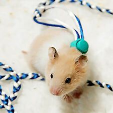 Find Great Deals For Animal Leash Rope For Hamster Mouse Squirrel Sugar Glider Harness Leashes Shop With Confidence On Ebay Small Pets Pet Rats Hamster