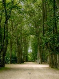 Parc de la Devesa - Girona - Spain