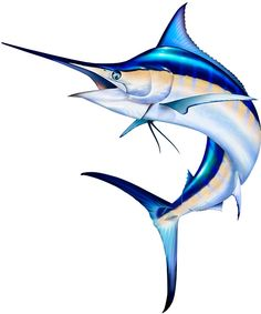 Jumping Blue Marlin Photoshop illustration http://www.spiritgraphix.com/saltwater-fish-clipart/