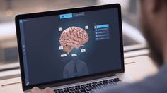 """To help make the answer to the question, """"What is a mind?"""", more accessible to the average individual, we designed and developed and interactive audio-visual online application that visitors can engage with at their own pace."""