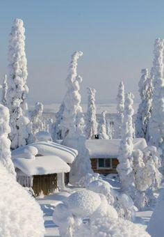 snow / Paisajes de invierno on imgfave Winter Szenen, Winter Love, Winter Magic, Winter Christmas, Winter White, Winter Travel, Christmas Town, Prim Christmas, Snowy Day