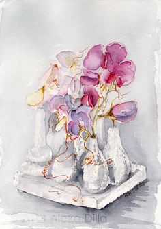 Vetches | Wicken Alexa Dilla Watercolor