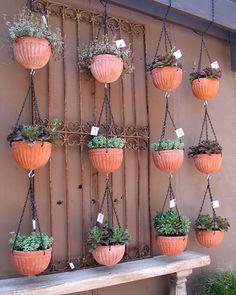 Innovative Hanging Pots