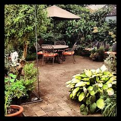 Summer afternoon in the Fishingham Garden | 09.08.12 | Photo by Jeff Fisher