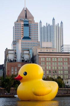rubber duck in pittsburgh | 40 Foot Rubber Ducky in Pittsburgh - UPI.com