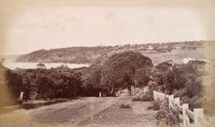 Tanti Creek Bridge, Schnapper Point (Mornington) ca. 1870-1880.