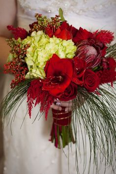 gorgeous Christmas wedding bouquet  http://thingsfestive.blogspot.com/2012/09/christmas-wedding-in-denver-co-hannah.html