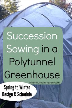 Succession Sowing Schedule & Design in a Polytunnel Greenhouse from Spring to Winter