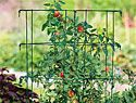 Growing Calendar -  When to Grow, Sow, Plant and Harvest atBurpee.com...just enter your zip
